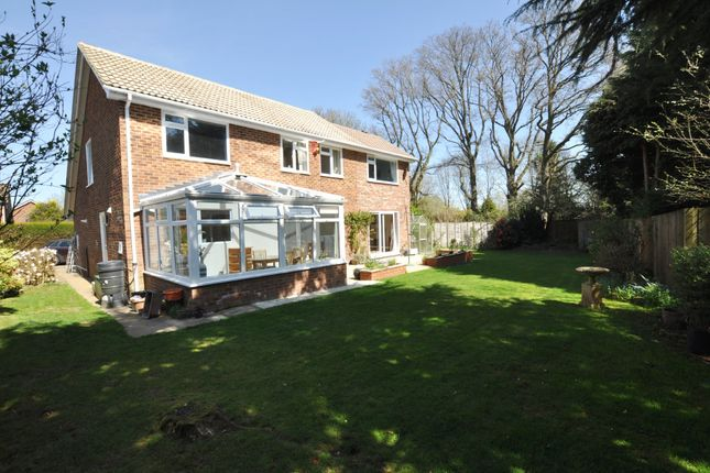 Thumbnail Detached house for sale in The Paddocks, Normandy, Guildford