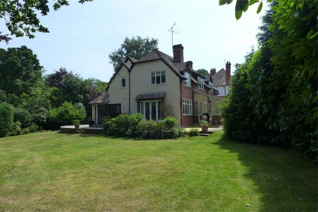 Thumbnail Detached house to rent in Branksomewood Road, Fleet