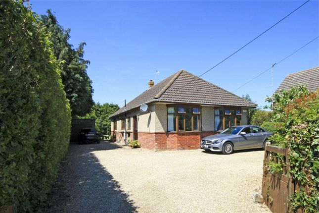 Thumbnail Detached bungalow for sale in Eastfield Lane, Ringwood