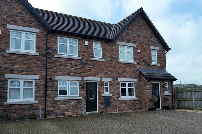 Thumbnail Property to rent in Turnstone Drive, Carlisle