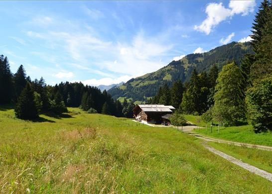 Thumbnail Detached house for sale in Gschwendstrasse 2, 3780 Gstaad, Switzerland