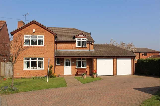 Thumbnail Detached house for sale in Blackthorn Close, Lutterworth