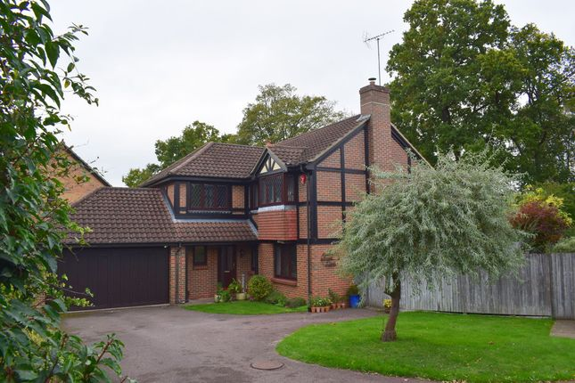 Thumbnail Detached house for sale in Forest Dean, Fleet