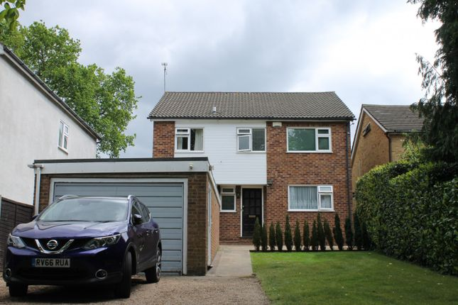 Thumbnail Property to rent in Elm Road, Woking