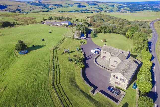 Thumbnail Equestrian property for sale in Long Causeway, Cliviger, Burnley