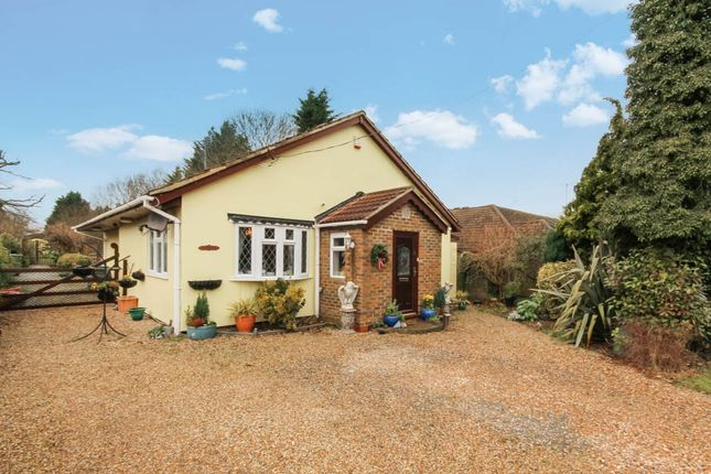 Thumbnail Detached bungalow for sale in New House Avenue, Wickford, Essex