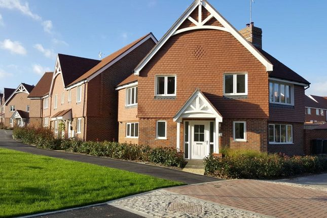 Thumbnail Detached house to rent in Sorrel Close, Lindfield, West Sussex