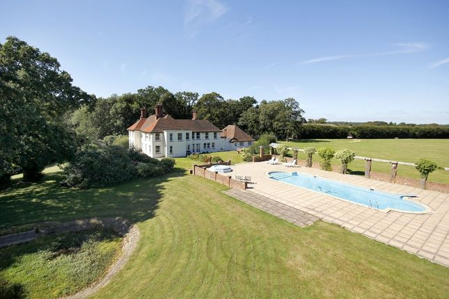 Thumbnail Equestrian property for sale in Nr. Shirley Holms, Lymington, Hampshire