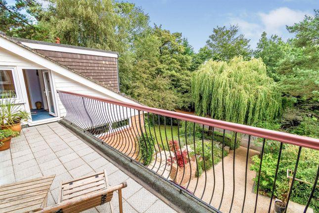 Thumbnail Detached house for sale in Glenwood Avenue, Bassett, Southampton