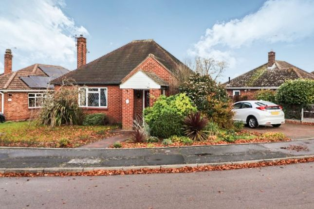 Thumbnail Detached bungalow for sale in Bramley Close, Lexden, Colchester