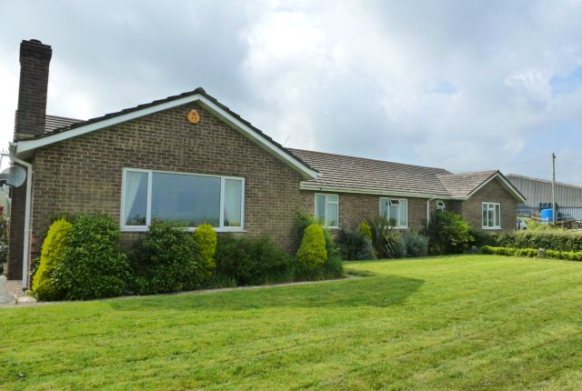 Thumbnail Detached bungalow for sale in Brynmore Acres, Cerne Abbas, Dorchester