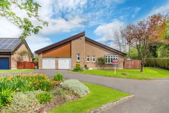 Thumbnail Detached bungalow for sale in Downfield Gardens, Bothwell