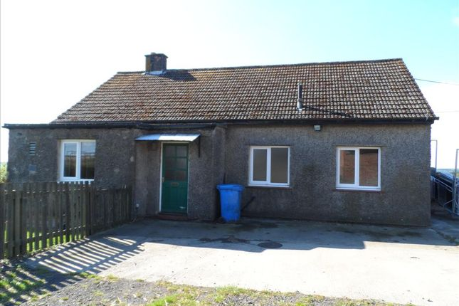 Thumbnail Bungalow to rent in Netherwitton, Morpeth