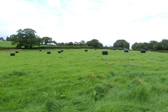 Llanhennock Sold Property