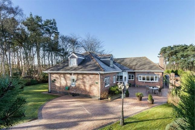 Thumbnail Detached house for sale in Fishpool Road, Delamere, Northwich, Cheshire