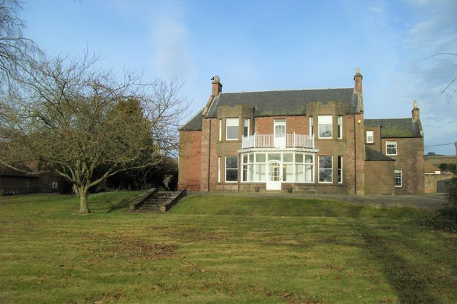 Thumbnail Detached house to rent in St Ninian's Road, Alyth