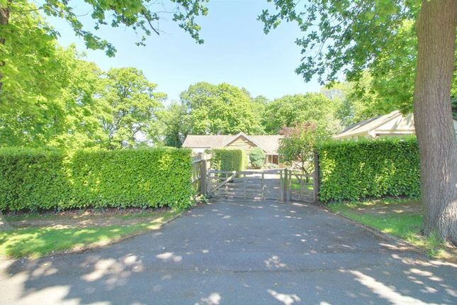 Photo 14 of Woodland Way, Purley CR8