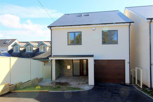 Thumbnail Detached house for sale in The Gardens, Monmouth