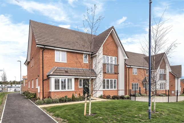 Thumbnail Detached house to rent in Gold Place, Binfield, Bracknell, Berkshire