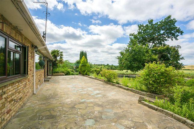 Garden of Mott Street, Loughton, Essex IG10