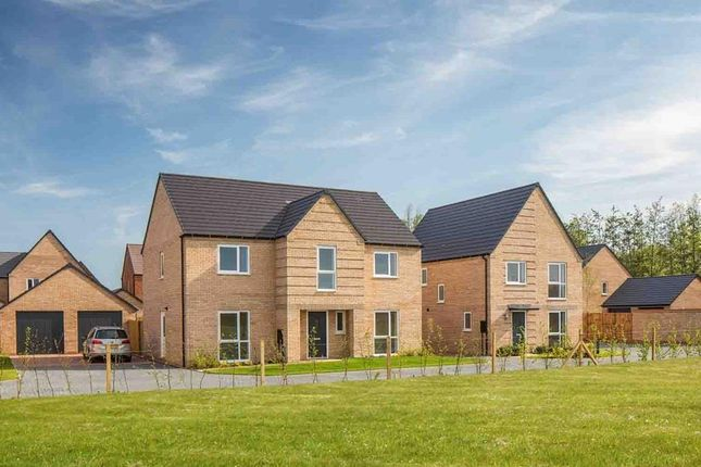"""Thumbnail Detached house for sale in """"Winstone"""" at Wellington Road, Northstowe, Cambridge"""