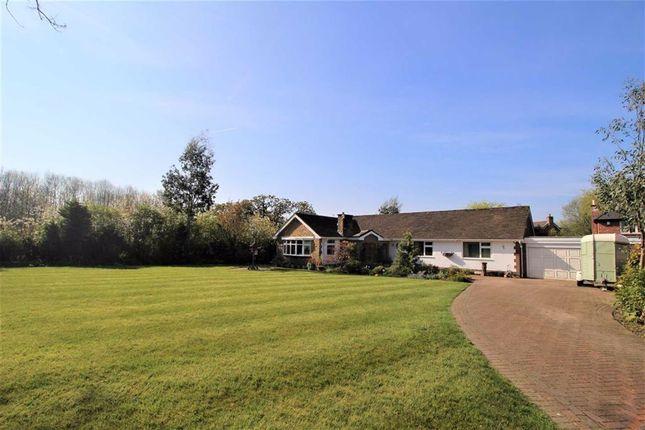 Thumbnail Detached bungalow for sale in Walker Lane, Fulwood, Preston