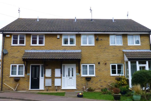 Thumbnail Terraced house to rent in Forge Lane, Whitstable