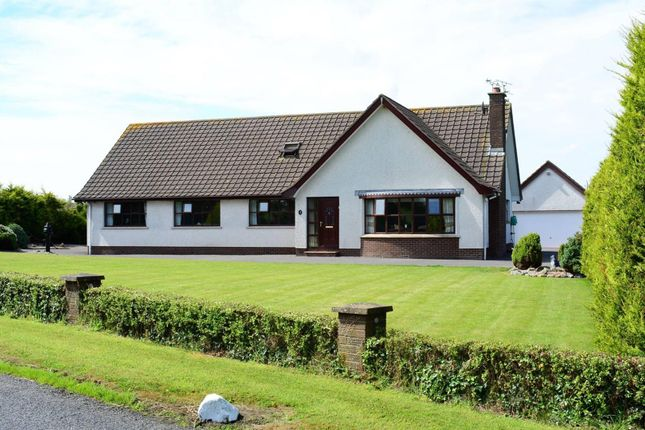 Thumbnail Property for sale in Ballybuttle Road, Millisle, Newtownards