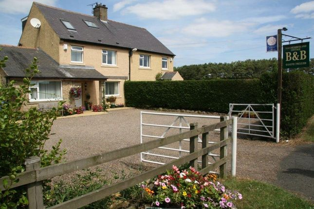 Thumbnail Semi-detached house for sale in Bed & Breakfast Business, Chevington Moor Cottages, Chevington, Morpeth