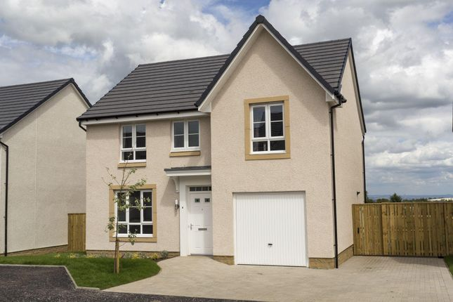 """Thumbnail Detached house for sale in """"Dornoch"""" at Rowan Street, Wishaw"""