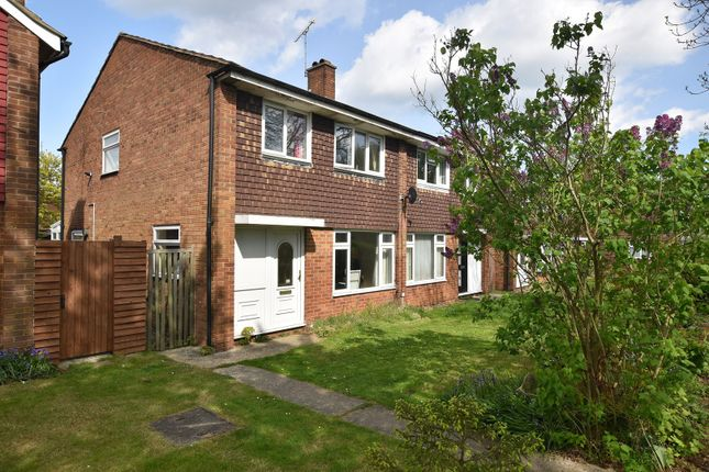 Thumbnail Semi-detached house for sale in Linnet Drive, Chelmsford