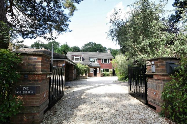Thumbnail Detached house to rent in Green Lane, Farnham Common, Buckinghamshire