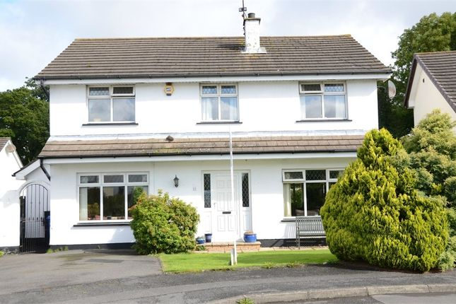 Thumbnail Detached house for sale in Castle Avenue, Moira, Craigavon, County Armagh