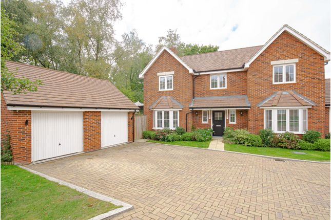 Thumbnail Detached house for sale in Whiteoak Close, Crawley