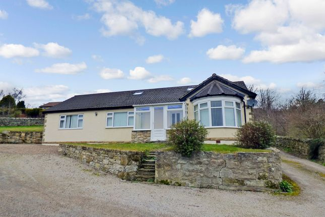 Thumbnail Bungalow for sale in Hillside, Rothbury, Morpeth