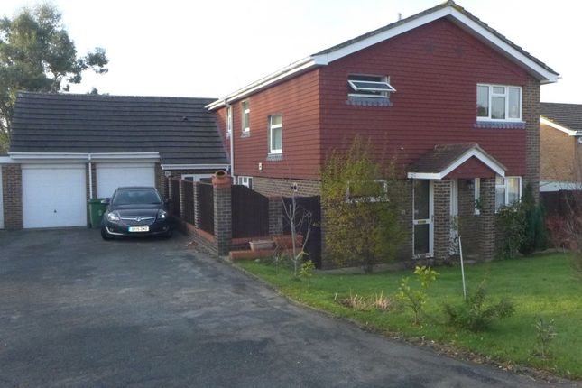 Thumbnail Detached house for sale in Iris Close, Basingstoke