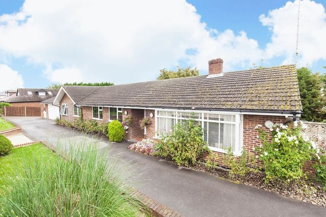 Thumbnail Bungalow for sale in Epping Road, Nazeing, Waltham Abbey