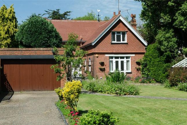 Thumbnail Detached house for sale in Grand Avenue, Worthing, West Sussex
