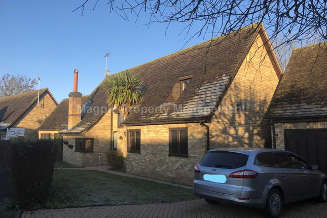 Thumbnail Detached house to rent in The Willows, Glinton, Peterborough