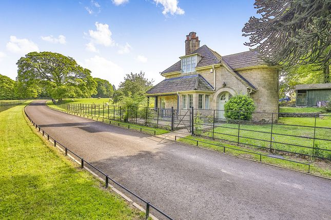 Thumbnail Detached house for sale in Hamsterley Mill, Rowlands Gill