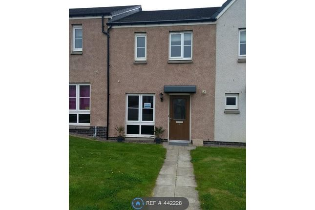 Thumbnail Terraced house to rent in Whitehills Lane South, Cove, Aberdeen