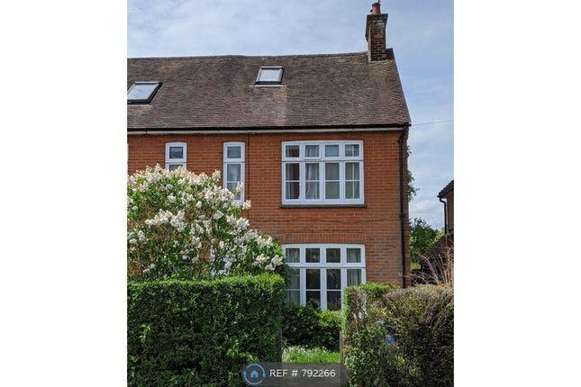 Thumbnail Semi-detached house to rent in Weydon Hill Road, Farnham