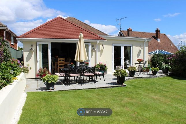 Thumbnail Bungalow to rent in Dale Road, Hythe