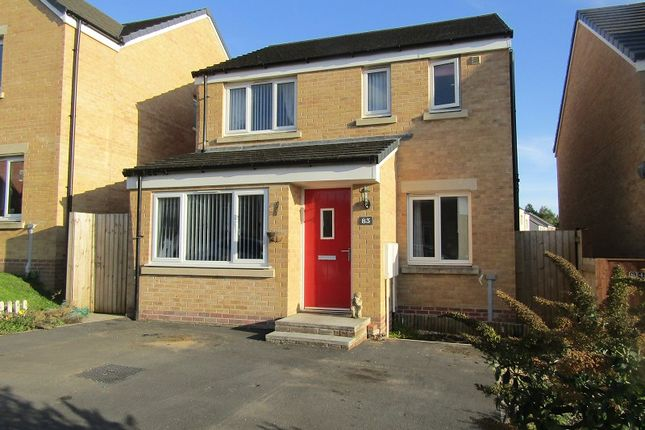 Thumbnail Detached house for sale in Emily Fields, Birchgrove, Swansea.