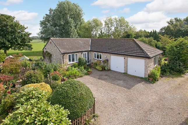 Thumbnail Detached bungalow for sale in Main Street, Newton Kyme, Tadcaster