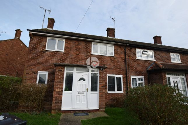 Thumbnail Terraced house to rent in Hawthorn Avenue, Colchester