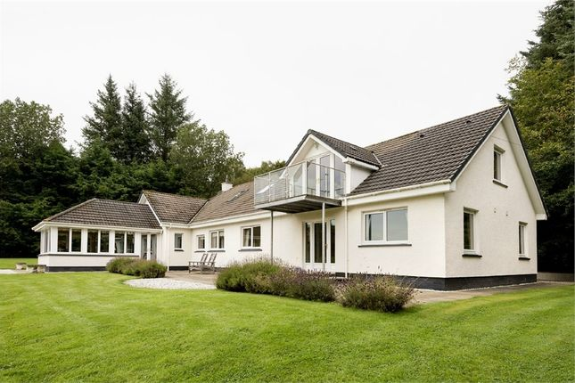 Thumbnail Detached house for sale in Balnain, Drumnadrochit, Inverness, Highland