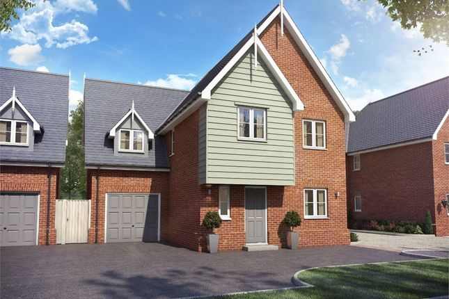 Thumbnail Detached house for sale in Ware Road, Widford, Ware, Herts