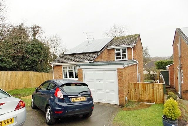 Thumbnail Detached house to rent in Cloverlands, Swindon