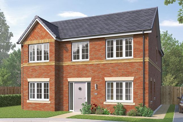 """Thumbnail Detached house for sale in """"The Pendlebury"""" at Greaves Lane, Stannington, Sheffield"""
